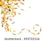 autumn oak leaves falling down... | Shutterstock . vector #453722116