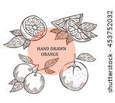 hand drawn decorative oranges ...   Shutterstock .eps vector #453752032