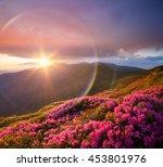 summer landscape with pink... | Shutterstock . vector #453801976