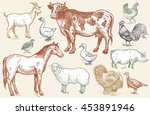 farm animals. goat  cow  horse  ... | Shutterstock .eps vector #453891946