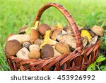 Small photo of Mushrooms (porcini and chanterelles) in the wicker basket on the green grass.