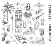 hawaii collection of vector... | Shutterstock .eps vector #453938815