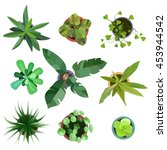 top view. big collection plants ... | Shutterstock .eps vector #453944542