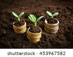 coins in soil with young plant. ... | Shutterstock . vector #453967582