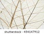 vein of dry leaf closeup macro...   Shutterstock . vector #454147912