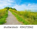 Path Through Wetland In...