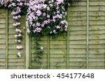 Garden Background With Wooden...