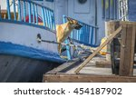 Small photo of A dog aboard a excursion boat