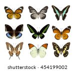 high quality of nature...   Shutterstock . vector #454199002