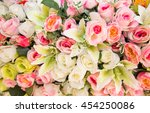colorful beautiful of nature... | Shutterstock . vector #454250086