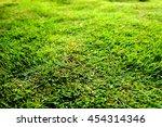 beautiful pattern of fresh... | Shutterstock . vector #454314346