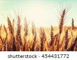 backdrop of ripening ears of... | Shutterstock . vector #454431772