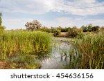 danube delta landscape | Shutterstock . vector #454636156