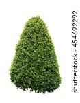 green bush isolated on white... | Shutterstock . vector #454692292