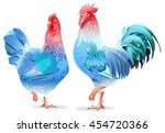 blue rooster and chicken female ... | Shutterstock .eps vector #454720366