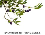 branch of olive tree with... | Shutterstock . vector #454766566