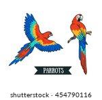 ara parrot. isolated vector... | Shutterstock .eps vector #454790116