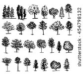 Trees Graphic Hand Drawn Vecto...