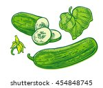 fresh green cucumbers   whole ... | Shutterstock .eps vector #454848745