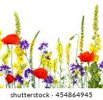wildflowers  linaria vulgaris ... | Shutterstock . vector #454864945