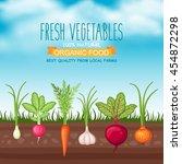 vector farm harvest... | Shutterstock .eps vector #454872298