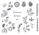 set of summer berries.... | Shutterstock .eps vector #455003932