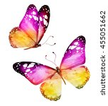Stock photo two color watercolor butterflies isolated on white background 455051662