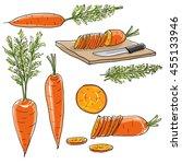 carrot vegetable set of  art... | Shutterstock . vector #455133946