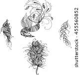 stylized phoenix  firebird ... | Shutterstock .eps vector #455560852