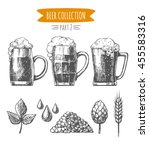 vector set of  hand drawn beer... | Shutterstock .eps vector #455583316