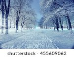 Night Landscape In Winter City...