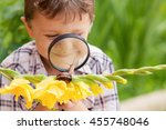 happy little boy playing in the ... | Shutterstock . vector #455748046