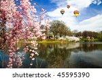 The Cherry Blossom Festival in Branch Brook Park New Jersey - stock photo