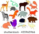 forest animals isolated on... | Shutterstock .eps vector #455965966
