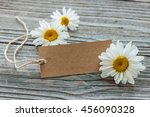 Daisy Flowers With A Vintage...