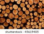 freshly cut timber logs | Shutterstock . vector #45619405