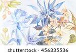 watercolor hand drawn...   Shutterstock . vector #456335536