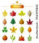 leaves vector icon set for... | Shutterstock .eps vector #456395842