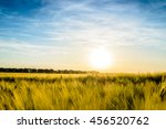 Sun Setting Over A Field Of...