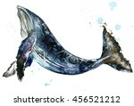 humpback whale watercolor... | Shutterstock . vector #456521212