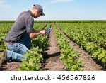 agronomist using a tablet in an ...