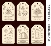 set of labels with pots of... | Shutterstock .eps vector #456581692