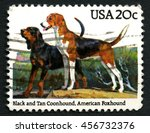 Small photo of UNITED STATES OF AMERICA - CIRCA 1984: A used postage stamp from the USA depicting an illustration of a black and tan Coonhound and an American Foxhound, circa 1984.