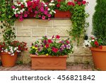 Many Clay Flowerpots With...