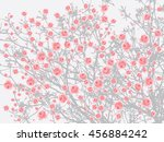 full bloom sakura tree  cherry... | Shutterstock .eps vector #456884242