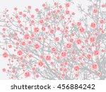 full bloom sakura tree  cherry... | Shutterstock .eps vector #456884242