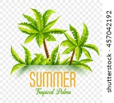 summer tropic coconut palms in...   Shutterstock .eps vector #457042192