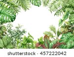 hand drawn  branches and leaves ... | Shutterstock . vector #457222042