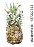 Pineapple. Tropical Fruit. Foo...