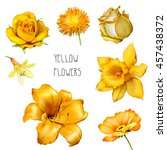 Stock photo set of beautiful yellow orange flowers bright rose aster flower iris and lily flower daffodil 457438372